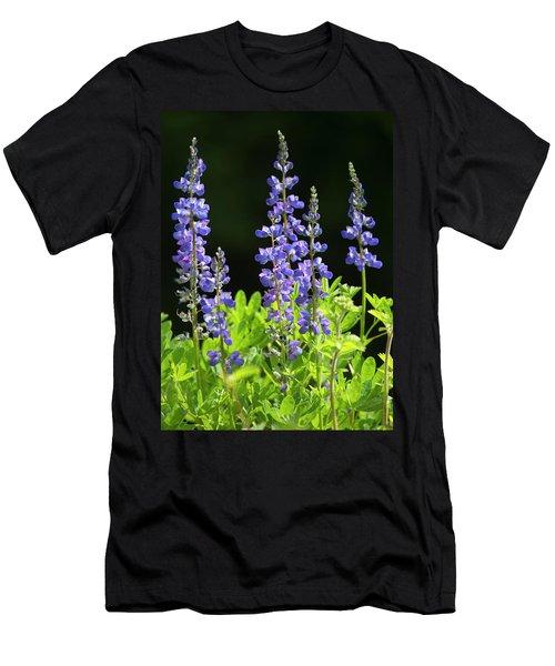 Brilliant Lupines Men's T-Shirt (Athletic Fit)