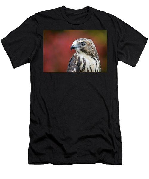 Broad Wing Hawk Men's T-Shirt (Athletic Fit)