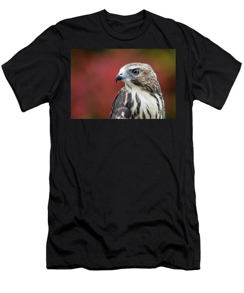 Broad Wing Hawk Men's T-Shirt (Athletic Fit)