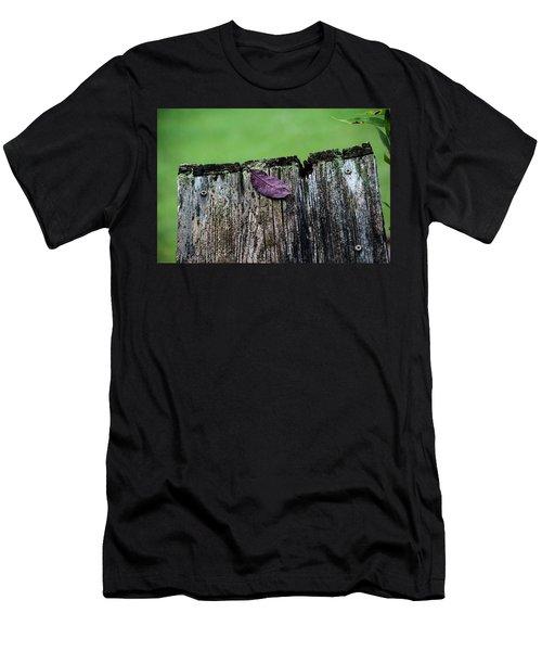 Brock's Leaf Men's T-Shirt (Athletic Fit)