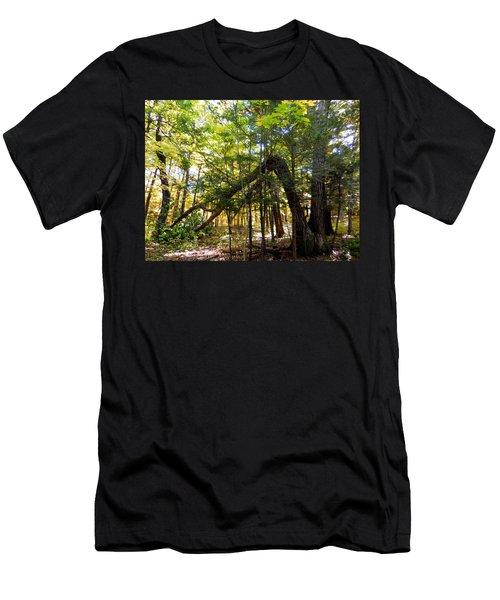 Broken Tree 2 Men's T-Shirt (Athletic Fit)