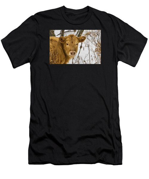 Men's T-Shirt (Athletic Fit) featuring the photograph Brown Cow by Ken Barrett