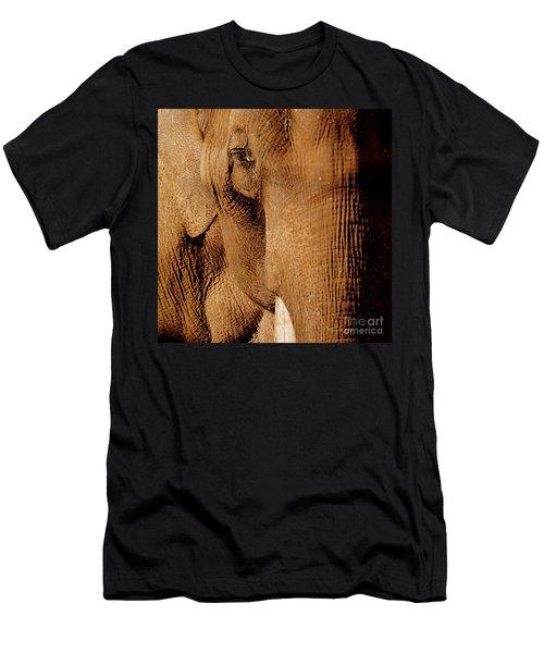 Brown Elephant Men's T-Shirt (Athletic Fit)
