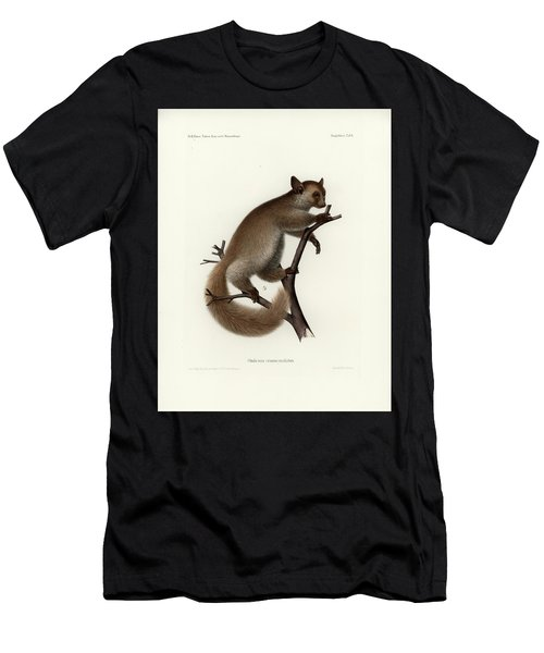 Brown Greater Galago Or Thick-tailed Bushbaby Men's T-Shirt (Athletic Fit)