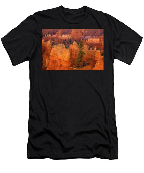 Bryce Canyon And Tree Men's T-Shirt (Athletic Fit)