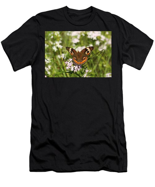 Buckeye Butterfly Posing Men's T-Shirt (Athletic Fit)