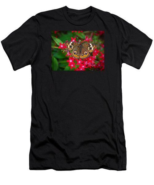 Buckeye On Pentas Men's T-Shirt (Athletic Fit)