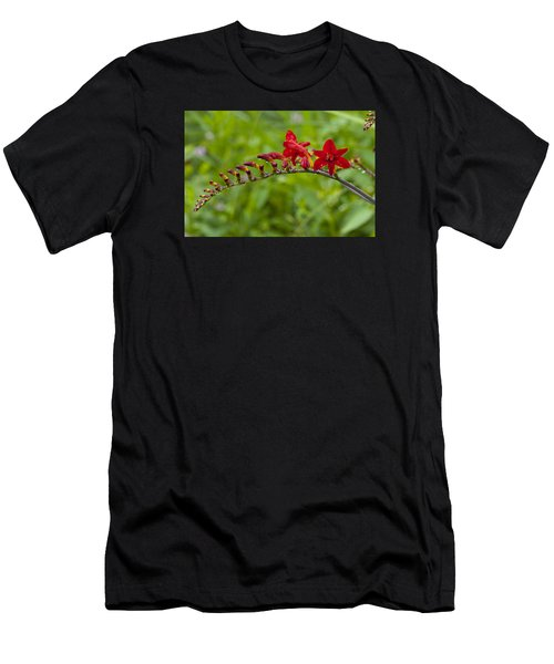 Budding Red Men's T-Shirt (Athletic Fit)