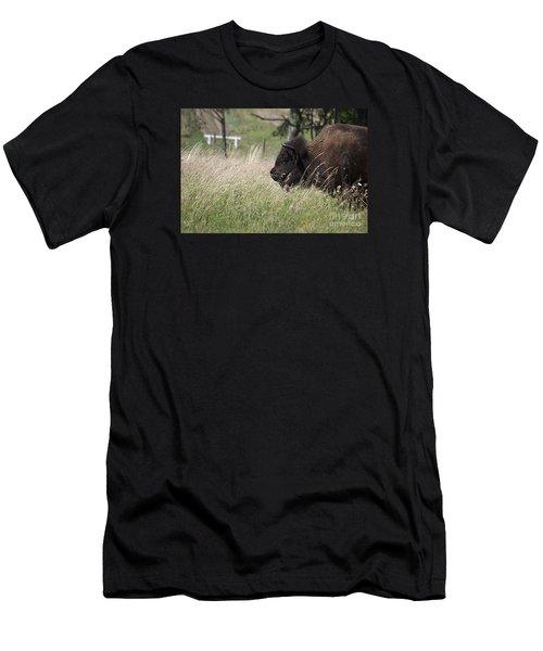 Buffalo Gal 20120724_378a Men's T-Shirt (Slim Fit) by Tina Hopkins