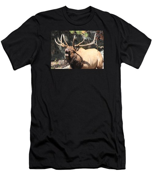 Bugling Bull Men's T-Shirt (Athletic Fit)