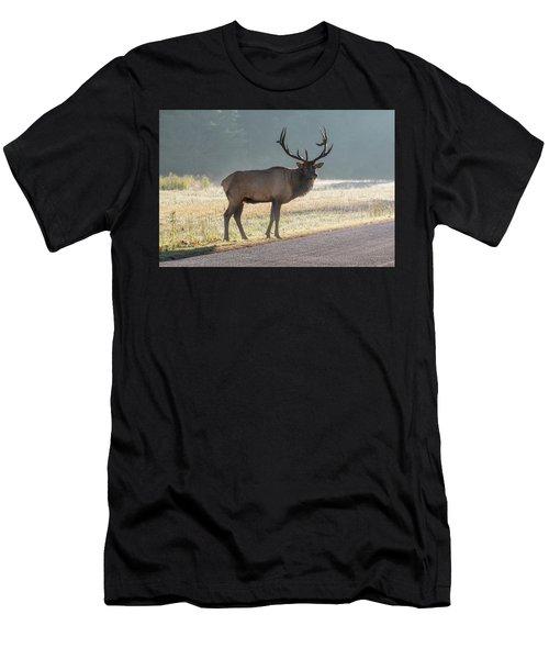 Bull Elk Watching Men's T-Shirt (Athletic Fit)