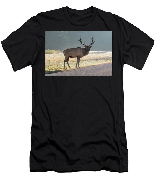 Bull Elk Watching Men's T-Shirt (Athletic Fit)