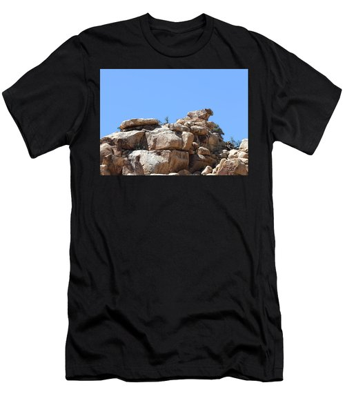 Bull From Joshua Tree Men's T-Shirt (Athletic Fit)
