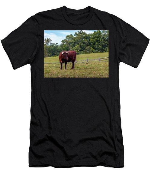 Bull In Field Men's T-Shirt (Athletic Fit)