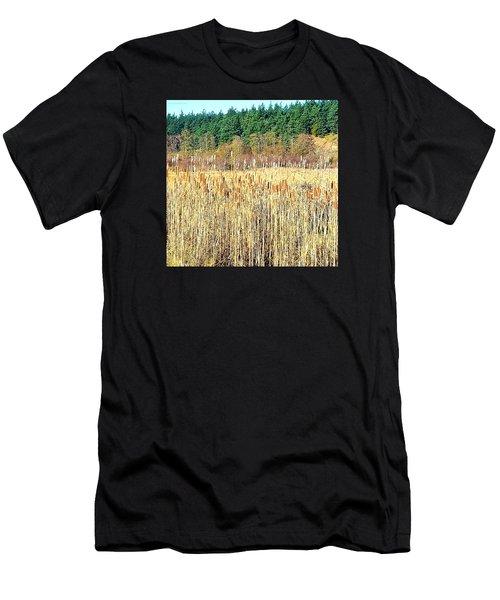Bullrushes In Late November Men's T-Shirt (Athletic Fit)