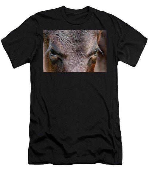 Bull's Eye Men's T-Shirt (Athletic Fit)