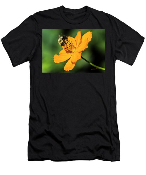 Bumble Bee And Flower Men's T-Shirt (Athletic Fit)