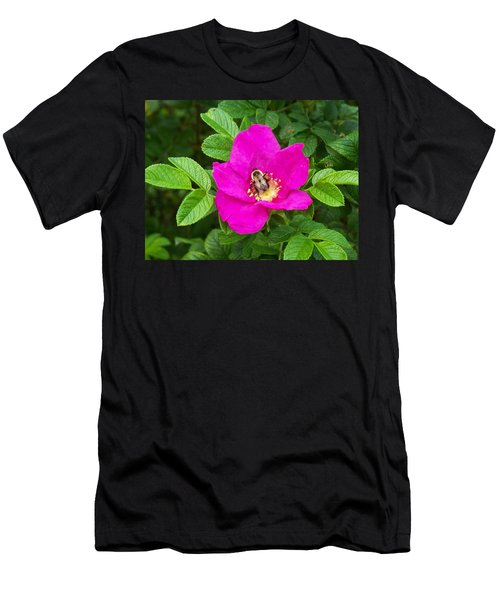Men's T-Shirt (Slim Fit) featuring the photograph Bumble Bee On A Wild Rose by Joy Nichols