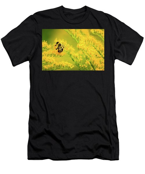 Bumble Bee On Goldenrod Men's T-Shirt (Athletic Fit)