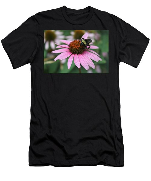 Bumble Bee On Pink Coneflower Men's T-Shirt (Athletic Fit)