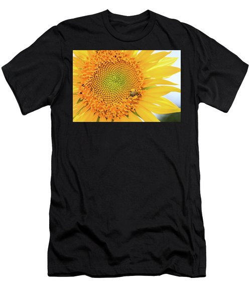 Bumble Bee With Pollen Sacs Men's T-Shirt (Athletic Fit)