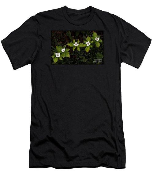 Bunchberry Flowers Men's T-Shirt (Athletic Fit)