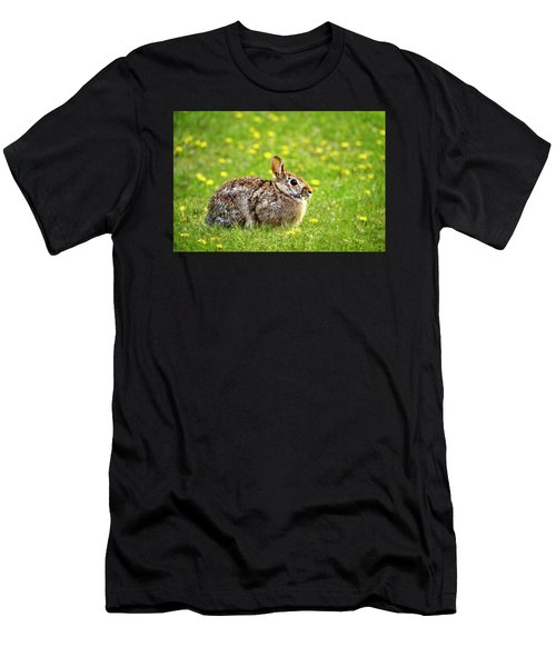 Bunny Rabbit Men's T-Shirt (Athletic Fit)