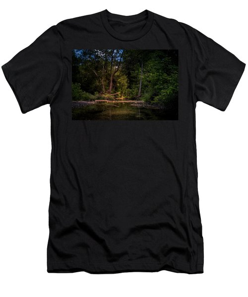 Busiek State Forest Men's T-Shirt (Athletic Fit)