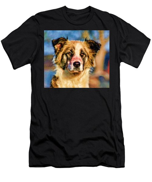 Buster Dog Viewing The Sunset Men's T-Shirt (Athletic Fit)