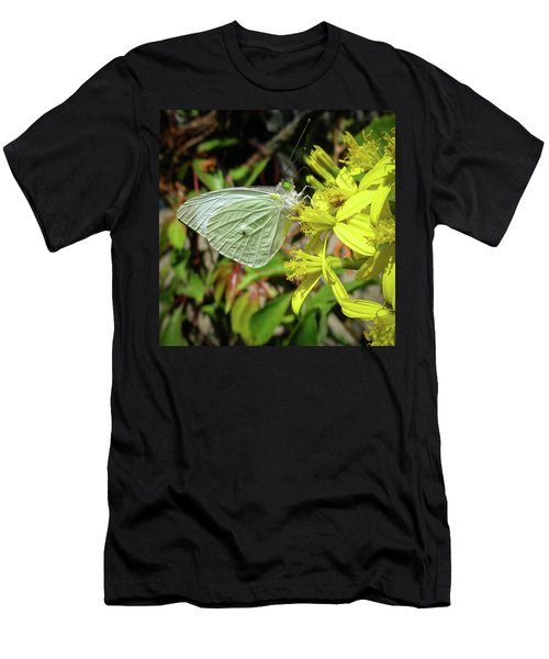 Butterfly Feasting On Yellow Flowers Men's T-Shirt (Athletic Fit)