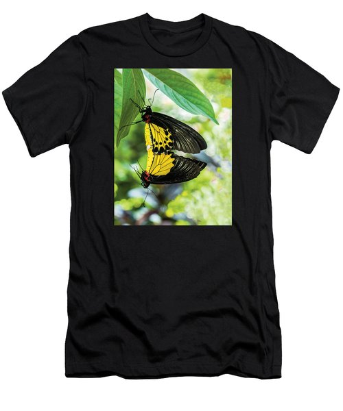 Butterfly Mating Men's T-Shirt (Athletic Fit)