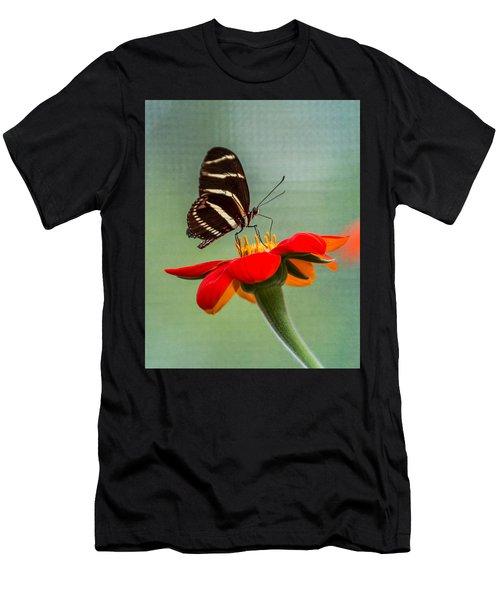 Butterfly Zebra Longwing On Zinnia Men's T-Shirt (Athletic Fit)