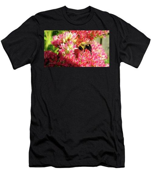 Buzy Bee Men's T-Shirt (Athletic Fit)