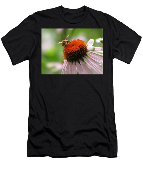 Buzzing The Coneflower Men's T-Shirt (Athletic Fit)