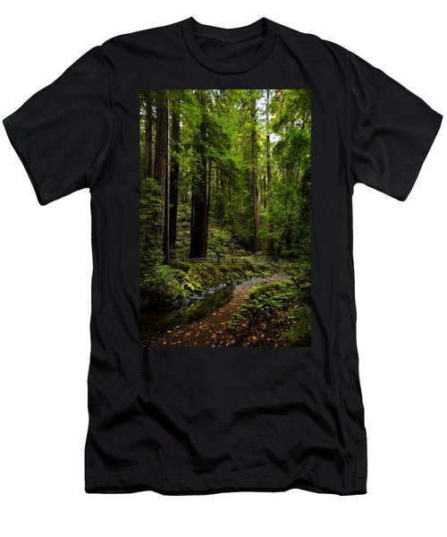 By The Stream In Muir Woods Men's T-Shirt (Athletic Fit)