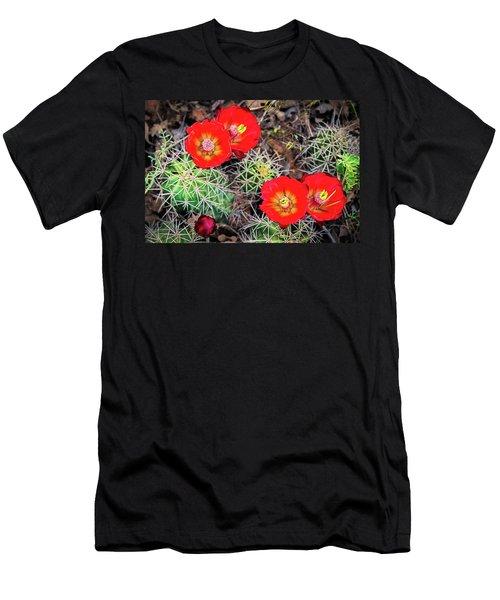 Cactus Bloom Men's T-Shirt (Athletic Fit)