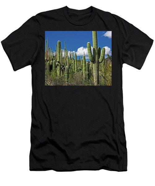 Cactus Field Men's T-Shirt (Athletic Fit)