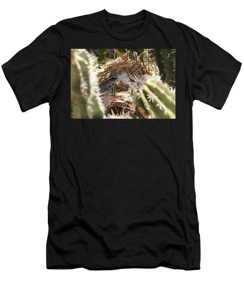 Cactus Wren Feather Men's T-Shirt (Athletic Fit)