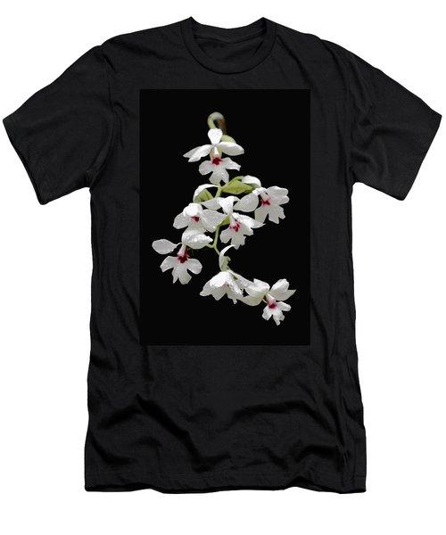 Calanthe Vestita Orchid Men's T-Shirt (Athletic Fit)