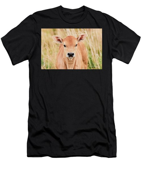 Calf In The High Grass Men's T-Shirt (Athletic Fit)