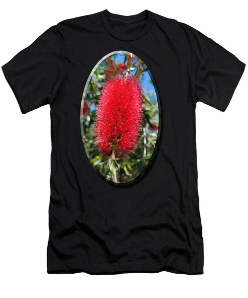 Callistemon - Bottle Brush T-shirt 2 Men's T-Shirt (Athletic Fit)