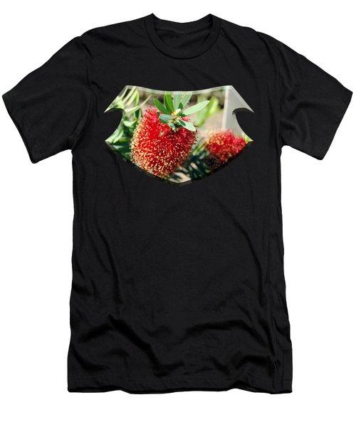 Callistemon - Bottle Brush T-shirt 4 Men's T-Shirt (Athletic Fit)