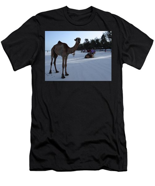 Camel On Beach Kenya Wedding 6 Men's T-Shirt (Athletic Fit)