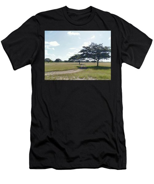 Camino En La Pradera Men's T-Shirt (Athletic Fit)
