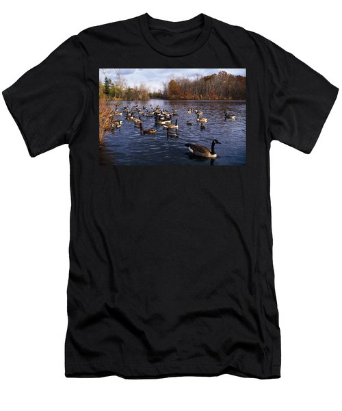 Canada Geese Branta Canadensis Men's T-Shirt (Athletic Fit)
