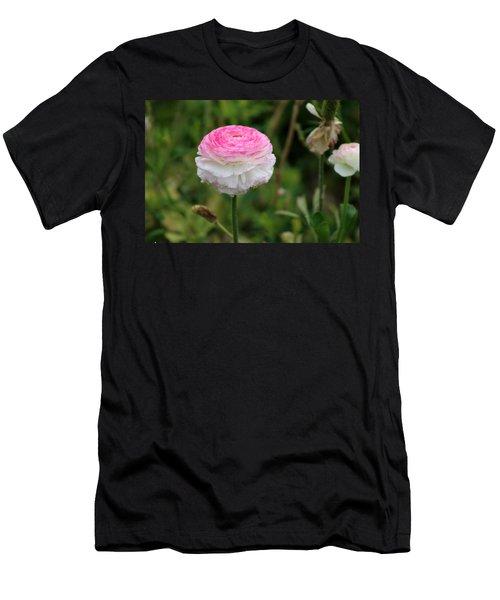 Candy Stripe Ranunculus Men's T-Shirt (Athletic Fit)