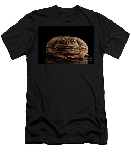 Men's T-Shirt (Athletic Fit) featuring the photograph Cane Toad - Bufo Marinus, Giant Neotropical Or Marine Toad Isolated On Black Background, Front View by Sergey Taran