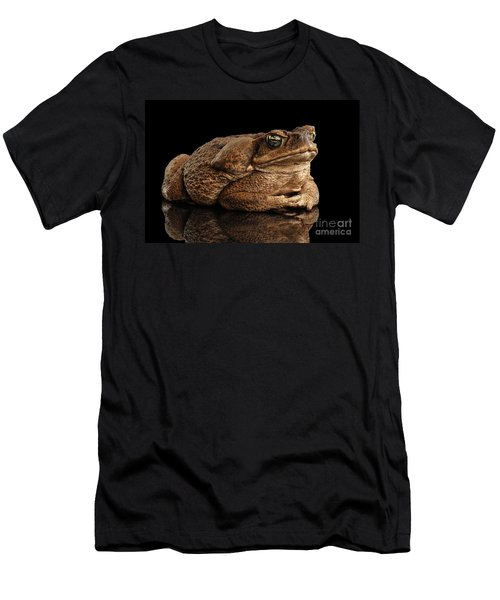 Cane Toad - Bufo Marinus, Giant Neotropical Or Marine Toad Isolated On Black Background Men's T-Shirt (Athletic Fit)