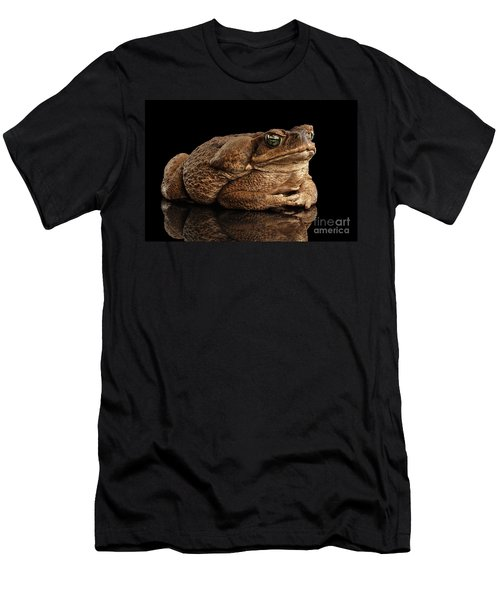 Men's T-Shirt (Athletic Fit) featuring the photograph  Cane Toad - Bufo Marinus, Giant Neotropical Or Marine Toad Isolated On Black Background by Sergey Taran