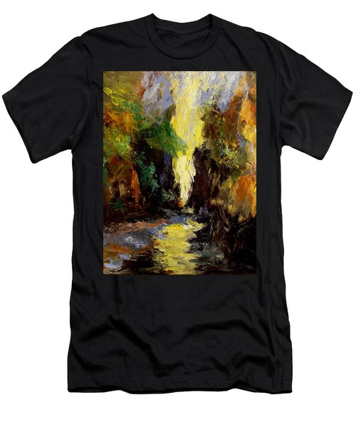 Canyon Creek Men's T-Shirt (Slim Fit) by Gail Kirtz
